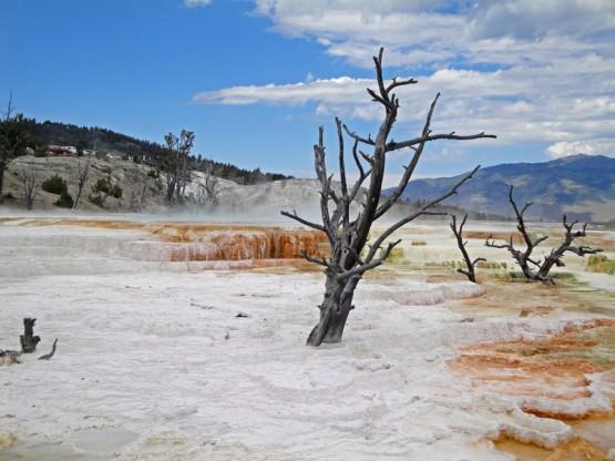 termas-yellowstone-7